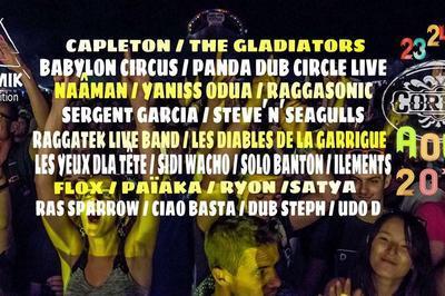 Panda Dub Circle Live / Raggasonic à Correns