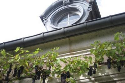 Parc De L'abbaye - Fontaines Et Impromptu Musical : L'europe Des Jardins Avec Victor Hugo - à Andelot Blancheville
