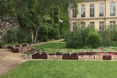 Parcours Biodiversité Dans Le Quartier Du Marais à Paris 4ème