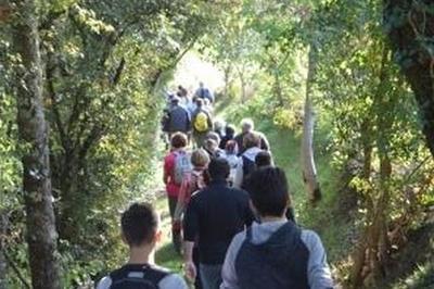 Parcours De Découverte Paysagère Du Pays De Serres Avec Un Guide à Le Bourg