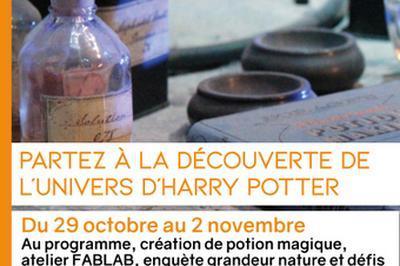 Partez A La Découverte D' Harry Potter à Macon