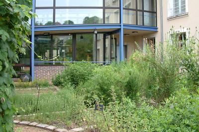 Partez En Famille à La Découverte Des Plantes Textiles à Argenton sur Creuse