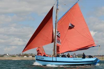 Patrimoine Maritime : Montez à Bord De Navires Traditionnels à Auray