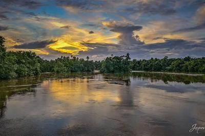 Plein les yeux en Guyane à Matoury