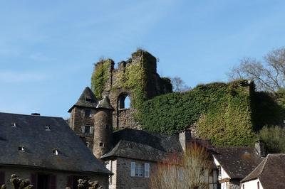 Présentation Du Vidéoguide à Segur le Chateau