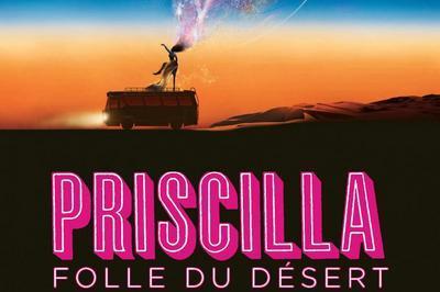Priscilla Folle du Désert à Strasbourg