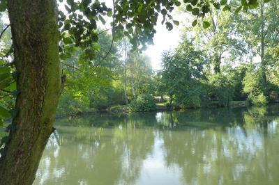 Promenade : En Chemin Avec Arbogast Et Gutenberg à Strasbourg