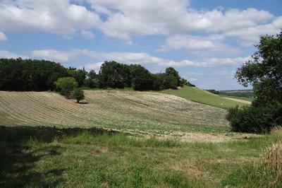 Quand Nature Rime Avec Culture à Belfort du Quercy