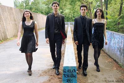 Quatuor à cordes Ravel - Schubert à Dieulefit