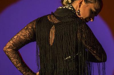 Raiz flamenca à Nice