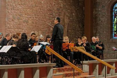 (re)découvrez La Mandoline Lors D'un Concert à Metz
