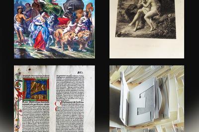 [re]découvrir... À La Bibliothèque Municipale De Châlon-sur-saône à Chalon sur Saone