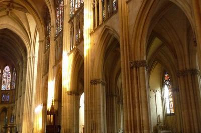 Récital Des Deux Orgues De La Cathédrale à Troyes