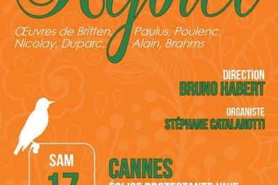 Rejoice à Cannes