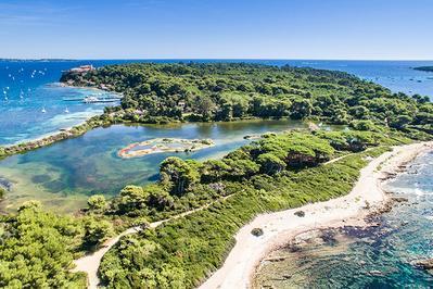 Réserve Biologique Domaniale De L'ile Sainte Marguerite à Cannes