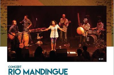 Rio Mandingue à Avignon