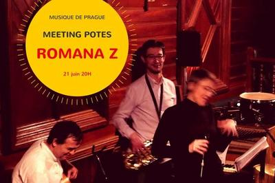 Romana Z fête la musique à Orléans