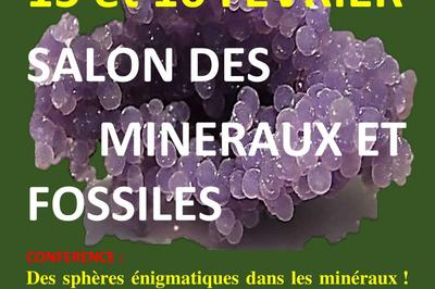 Salon des mineraux et fossiles d'Abbeville 80