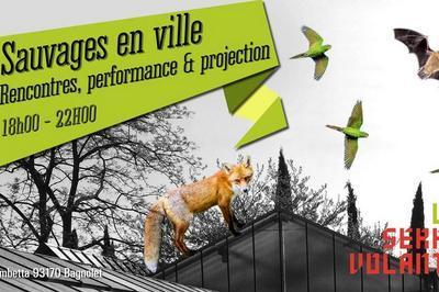 Sauvages en ville — Rencontres, performance & projection à Bagnolet