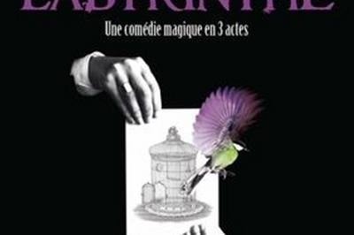 Sébastien Thill Dans Labyrinthe à Paris 4ème