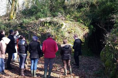 Site Archéologique Des Grottes Du Pape à Brassempouy