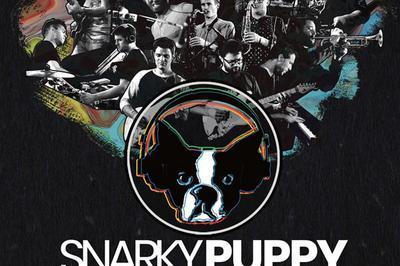 Snarky Puppy à Toulouse