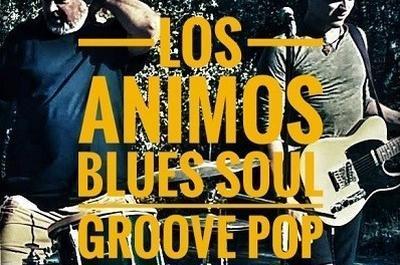 Soiree Blues Soul Avec Los Animos à Avignon