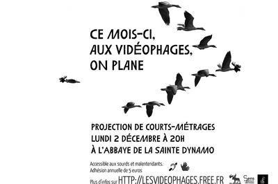 Soirée Mensuelle des Vidéophages | Projection de courts-métrages 2019