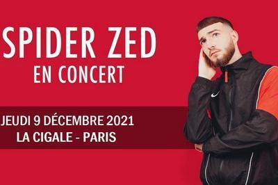 Spider Zed à Paris 18ème