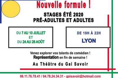 Stage d'été au Gai Savoir - Grands Adolescents et Adultes à Lyon