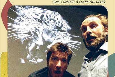 Steve & Stan : Wouaf ! Ciné-concert À Choix Multiples à Toulouse
