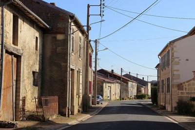Sur Les Traces De Chardon, Le Petit Hérisson à Chardogne