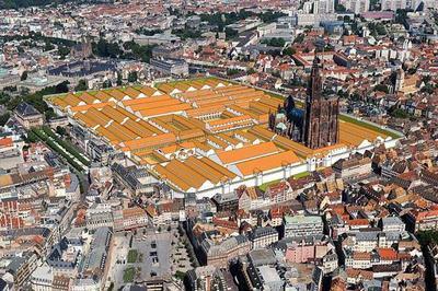 Sur Les Traces Du Camp Romain : Visite Du Musée à La Ville à Strasbourg