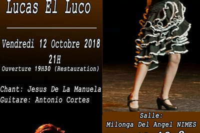Tablao flamenco à Nimes