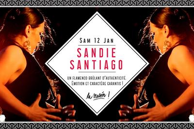 Tablao Sandie Santiago à Marseille