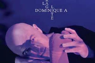 Dominique A - solo à Aubergenville