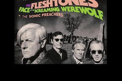 The Fleshtones + The Sonic Preachers à Saint Jean de Vedas