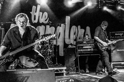 The Stranglers à Saint Herblain