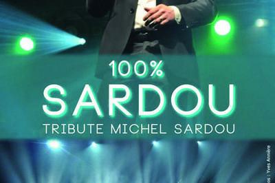 Tribute à Michel Sardou 100% live à Mourmelon le Grand