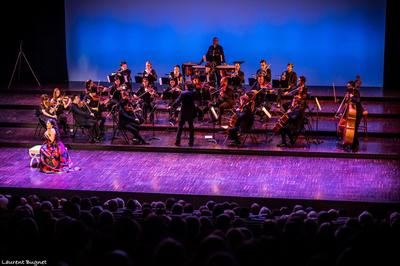 Trois siècles d'Opéra | Orchestre de chambre nouvelle Europe à Chartres