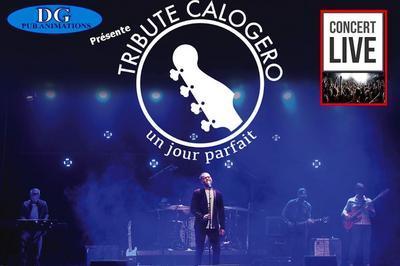 Un Jour Parfait - Tribute Calogero à Peronne