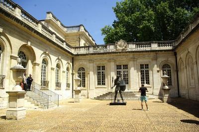 Un Patrimoine Universel: à La Découverte Des Collections Extra-occidentales Au Musée Calvet à Avignon