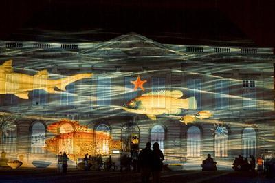 Une Nuit Au Muséum Du Havre à Le Havre