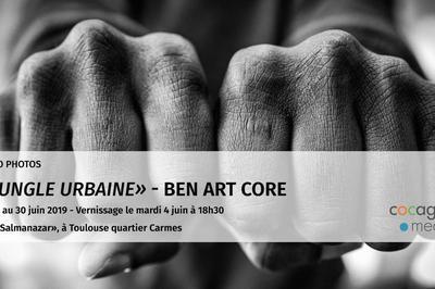 Vernijungle Urbaine Par Ben Art'core  à Toulouse