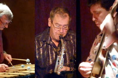 Vibrasax Trio Jazz Et Musique Du Monde à Grenoble