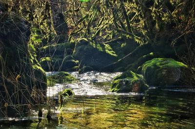 Vieu Secret : De L'aqueduc Romain à La Source Du Groin. Visite Au Fil De L'eau