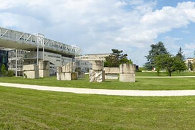 Visite Art Et Sciences À L'atheneum à Dijon