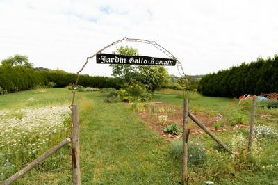 Visite-atelier : à La Découverte Des Plantes Aromatiques Gallo-romaines à Dehlingen