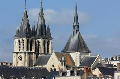 Visite Commentée De L'abbaye De Saint-laumer À L'église Saint-nicolas à Blois