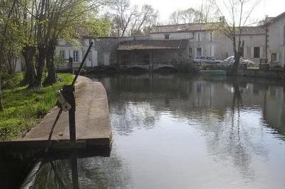 Visite Commentée De L'histoire Du Moulin à Javrezac